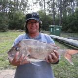 snapper time